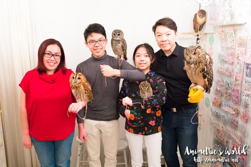 Akiba Fukurou Owl Cafe