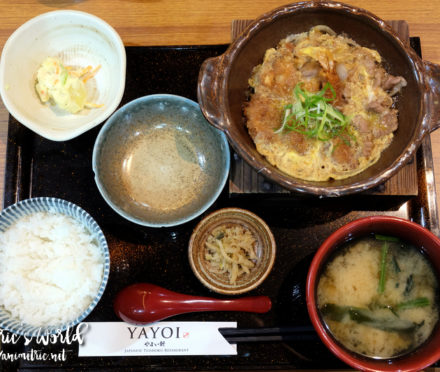 Yayoi Japanese Teishoku Restaurant